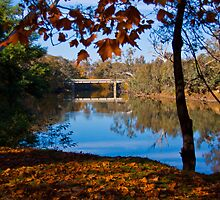 Lovely Autumn View by John Vandeven