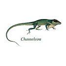 Chameleon by garts
