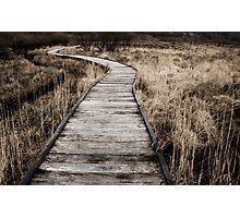 Malham Tarn Marsh Boardwalk Photographic Print