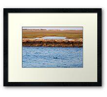 Cape Cod National Seashore Framed Print
