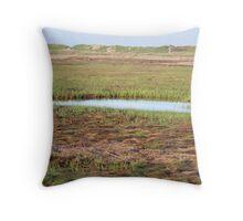Cape Cod National Seashore Throw Pillow