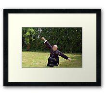 Kung Fu Block Framed Print