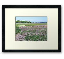 Wellfleet Bay Wildlife Sanctuary Framed Print