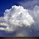 Rainbows... by LindaR