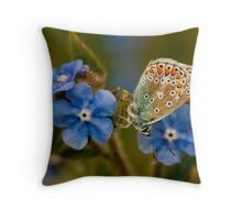 Adonis Blue Underwing Throw Pillow