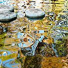 Kings Park pond by SUBI