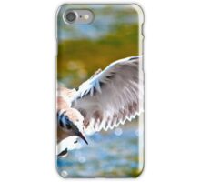 Black-headed gull (Chroicocephalus ridibundus) - 3  iPhone Case/Skin