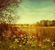 zyfflich, Germany by Yool