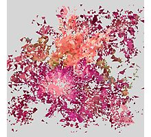 Meshed Up Summer Blossoms Photographic Print