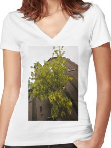 Beautiful Golden Chain Tree in Full Bloom Women's Fitted V-Neck T-Shirt