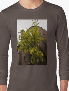 Beautiful Golden Chain Tree in Full Bloom Long Sleeve T-Shirt
