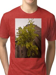 Beautiful Golden Chain Tree in Full Bloom Tri-blend T-Shirt
