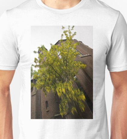 Beautiful Golden Chain Tree in Full Bloom Unisex T-Shirt