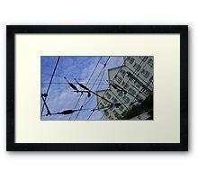 house web Framed Print