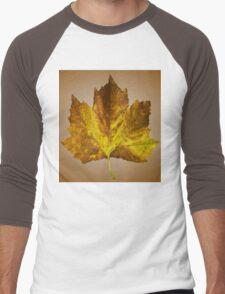 Autumn leave Men's Baseball ¾ T-Shirt