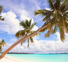 Whispering Palms. Maldives by JennyRainbow