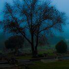 Lone Tree by KellieJayne