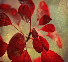 Ablaze with Life by Lynn Benson