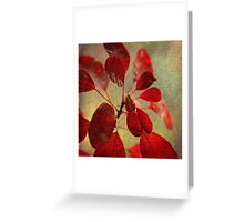 Ablaze with Life Greeting Card