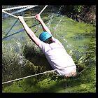 Swamp Splash by Wishart