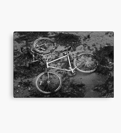 Tricycle? Canvas Print