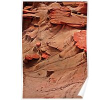 Red Planet, Drumheller, AB Poster