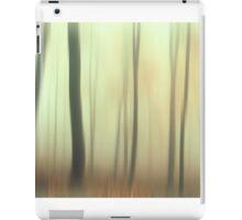 Terra Incognita. Impressionism  iPad Case/Skin