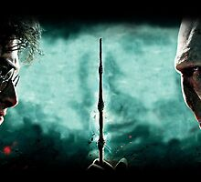 Harry Potter Vs Lord Voldemort by BenH4