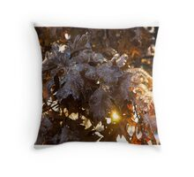 Honey Colored Honeycomb Ice With a Sun Flare Throw Pillow