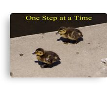 One Step at a Time - aww Baby Ducks Canvas Print