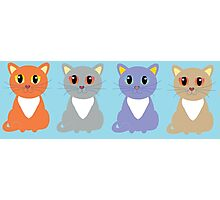 Only Four Cats Photographic Print
