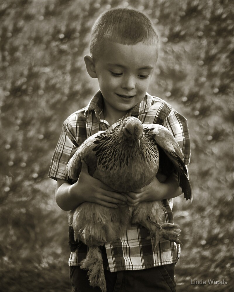 Chicken Catcher by Linda Woods