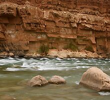 Colorado River, Lee's Ferry, CO by David Galson