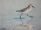 Sand Piper by Charlotte Yealey
