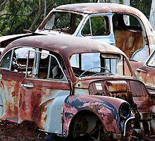 Going Cheap - Hill Ends NSW Australia by Bev Woodman