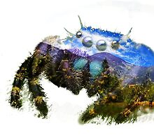 Spider Mountain by VLRDesign