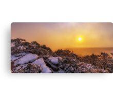 Grampians Snow Sunrise - Shrubs Canvas Print