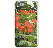 Red Flower Blossoms on a Tree iPhone Case/Skin