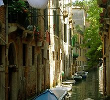 Last-Minute Laundry - Venice by feng008