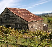 Barn in wine country by N2Digital