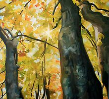 Through the Trees by Jessica Ashburn