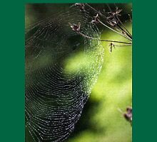 Spider's web with texture Unisex T-Shirt