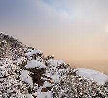 Grampians Snow Sunrise - Shrubs by hangingpixels