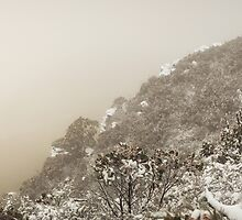 Grampians Snow Sunrise - Curve by hangingpixels