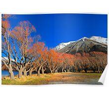 Lake Pearson Willows Poster
