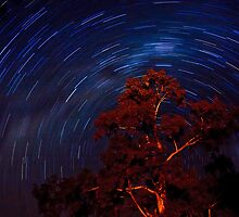 Star trails. by trevorb