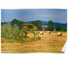Tuscan Life II Poster