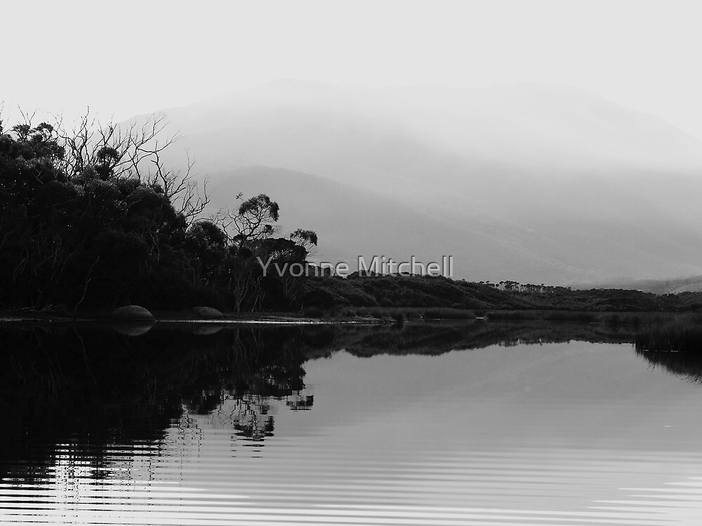 Tidal River Shades of Grey - Wilsons Prom, Victoria, Australia by Yvonne Mitchell