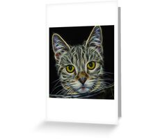Calico Cat Greeting Card