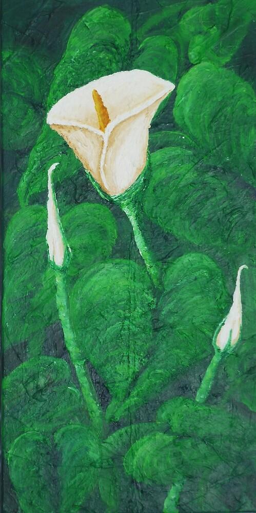Calla Lilies by Karirose